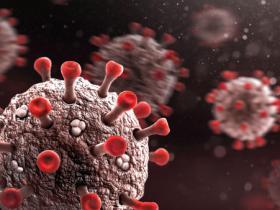 注射吸毒人员携带艾滋病的抗病毒治疗分析