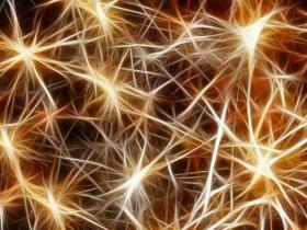 常见毒品对大脑神经元的危害